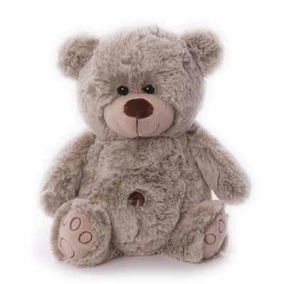 BABY GESCHENKKORB MIT TEDDY CHARLY