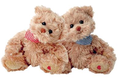 DIE ZWEI KUMPELS Plüsch Teddybär Geschenke